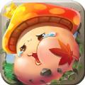 枫之大陆召唤版v1.1.4.24 免费版