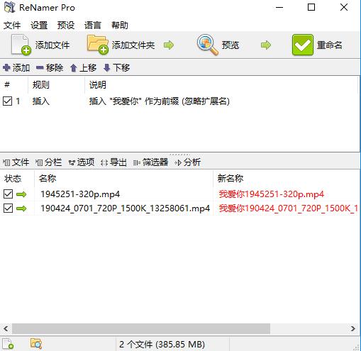 Rename Pro批量命名工具汉化版v6.9 绿色版