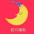 皓月辅助稳定赚钱平台v1.1 中文版