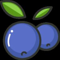 蓝莓素颜照查看器智能版v1.3 安卓版