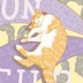 小橘动漫社漫迷必备版v1.0 苹果版