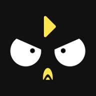 笨鸟数据网红直播带货最新版v1.0.0 免费版