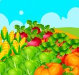 幸运农场种菜安卓版v1.0.0 安卓版