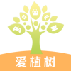 爱植树一键领和平精英皮肤助手v1.0.0 稳定版