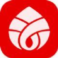 慈音视商app直播带货版v1.3.2 免费版