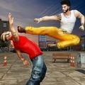空手道拳击手汉化手机版v1.2 免费版