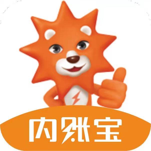 内账宝app流程版v3.0.2.20201109 最新版