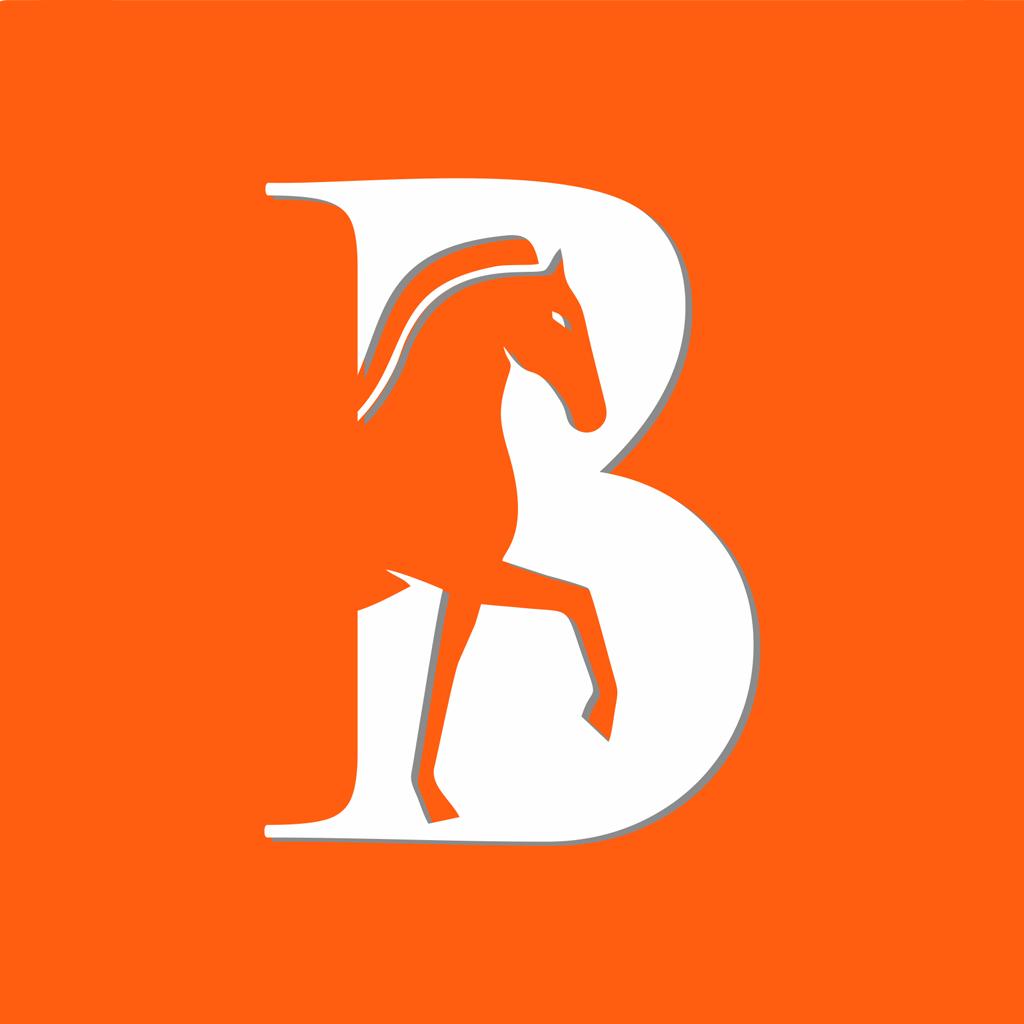 马帮智运app便捷版v1.0.0 手机版
