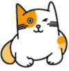 推次元去广告破解版v1.0.0 稳定版