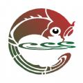 天地泰宁融媒体中心v0.5.13 最新版