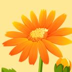 小华花圃20元奖品版v1.0 安卓版
