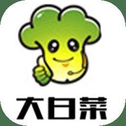 大白菜u盘启动盘制作工具纯净版v1.0.0 电脑版