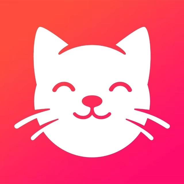 养猫联盟红包合成赚钱版v1.0 手机版