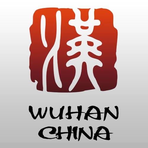 武汉消费券领取发放平台大额补贴版v1.9.9.13 全面投放版