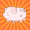 开心养猪厂合成赚钱版v1.2.7 签到送红包版