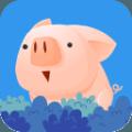 诱捕小猪趣味版v1.0.2  免费版