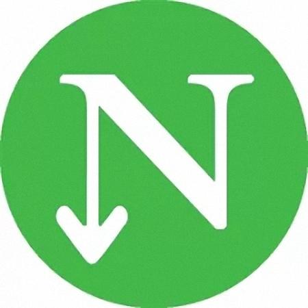 ndm下载器无广告版v10.0.1 手机版