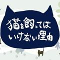 不能养猫的理由单机版v1.0.0 安卓版v1.0.0 安卓版