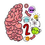 大脑测试2无限提示内购破解版v0.59 优化版