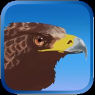 鹰狩猎之旅手机版v1.121  安卓版