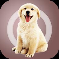 人狗交流器安卓最新版v1.1.8 正式版
