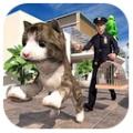 非常宠物猫模拟器欢乐互动版v1.0 免v1.0 免费版