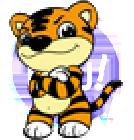虎奔等考卡密激活码最新版v5.0.2 安卓版