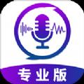 王者变声器专业免收费版v1.0.2 安卓版