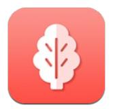 菠菜管理语音识别快速版v1.2.2 安卓版