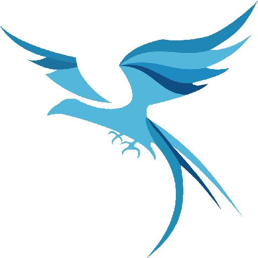 雷鸟下载器永久特权版v2.0.4 稳定版