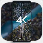 4K动态壁纸解锁会员版v1.8.0.0 免费版
