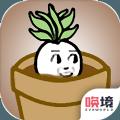 一个萝卜一个盆中文版v1.0 唤镜版
