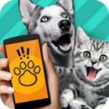 宠物语言翻译器手机版v1.0.32 安卓版