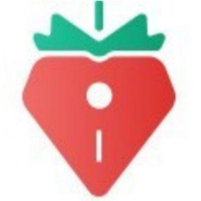 草莓派问卷app答题赚钱版v1.0 手机v1.0 手机版