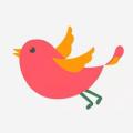 飞鸟看点高额福利版v1.0 手机版