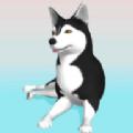 狗狗ASMRv1.0.1 安卓版