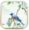 诗词大挑战游戏安卓版v1.0.5免费版