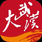 大武汉app官方v4.0.1 最新版